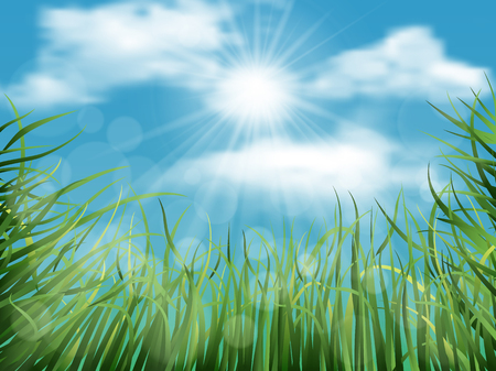 grass sky: Spring natural background with grass, sky, sun and clouds Illustration