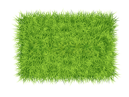 Green grass rectangle - vector nature background Çizim