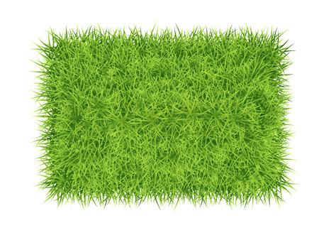 Green grass rectangle - vector nature background Vectores