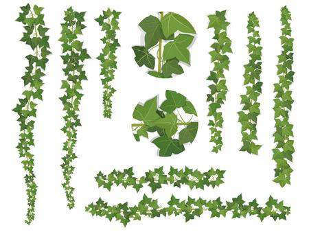 Ivy Zweige von oben wachsen nach unten und oben. Diese Elemente können als eine Art Pinsel (Skala proportional), um von jeder zu erstellen verwendet werden gelockt Form.