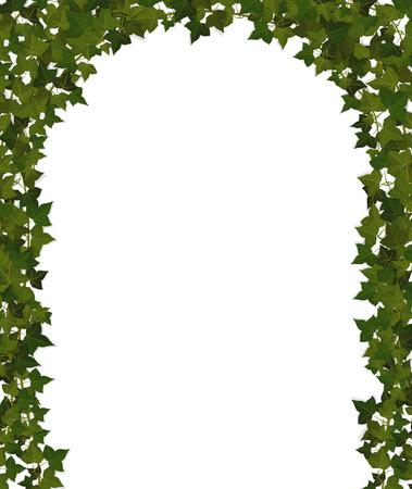 登山植物つる植物のアーチ  イラスト・ベクター素材