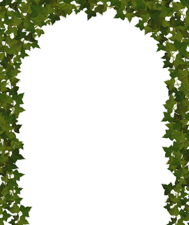 arch of climbing plant vines Stock Vector - 38990941