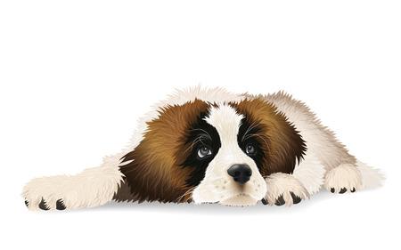 Cute puppy lying sad.The breed St. Bernard or Moscow watchdog.