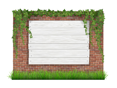 vines: Green grass, ivy and white wooden sign hanging on a brick wall background. Realistic vector illustration. Illustration