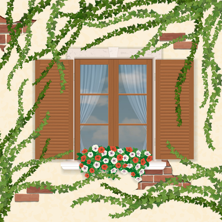 overgrown: Wooden window with shutters, overgrown ivy. The element of the facade of the building. Vector illustrations.