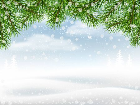 snowdrifts: Winter background with pine branches snowflakes and snowdrifts.
