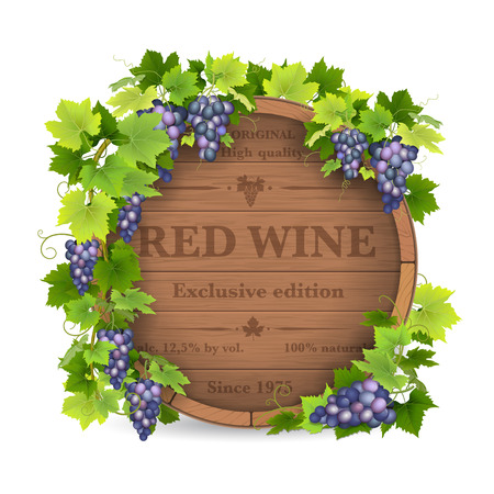 grapes on vine: Barrels for wine and vine with grapes.