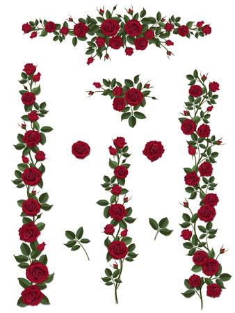 Takken klimmen rode roos bloem met bladeren en knoppen. Elementen kunnen worden gebruikt als Art Brush (schaal proportioneel) maken van elke vorm gekruld. Naar het balkon gevels, hek, muur, kaart te versieren. Stockfoto - 52404175