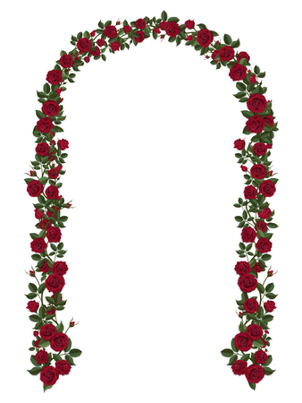 Arch of red climbing roses. Floral design. Wedding decoration. Illustration
