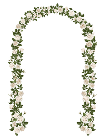 climbing frame: Arch of white climbing roses. Floral design. Wedding decoration.