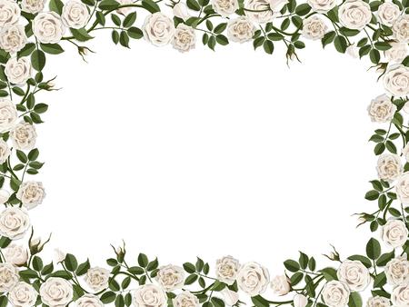 白いバラの正方形の境界線。テキストや写真の空の場所とベクトル装飾花フレーム。  イラスト・ベクター素材