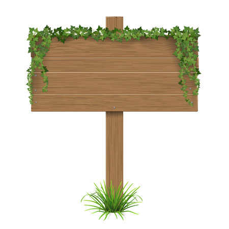 Wooden signpost covered of ivy sticks out of the grass. The template with blank space for text.