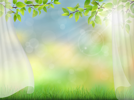 tree grass: Summer background with curtains and tree branches with green leaves. Grass and glare with bokeh.