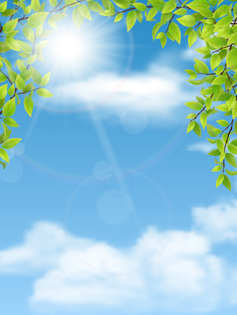 sky blue: Trees branches with green leaves on blue sky background.