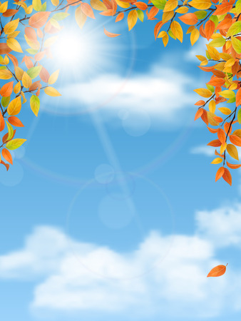 trees seasonal: Autumn trees branches with red leaves on blue sky background. Vector seasonal background. Illustration