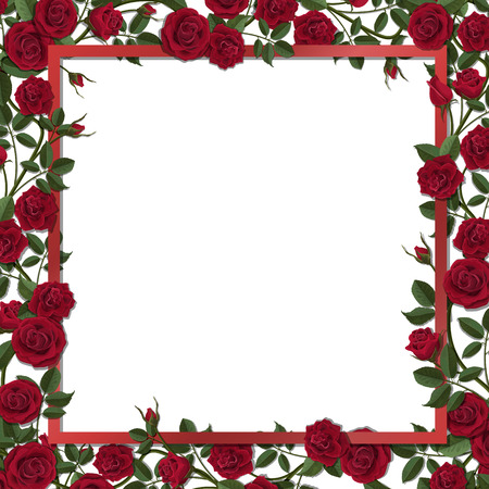 overgrown: Square frame overgrown red blossom rose flowers. Vector template for greeting card, wedding or Valentines day.