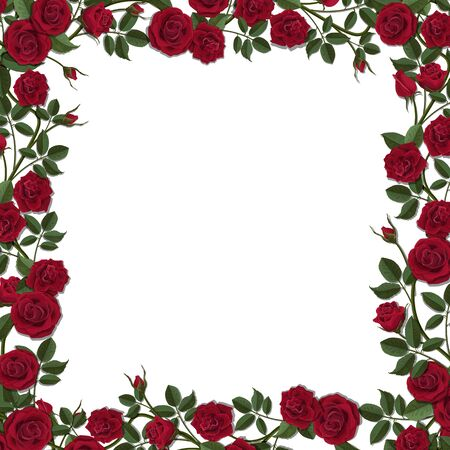 Square frame of red blossom rose flowers. Vector template for greeting card, wedding or Valentine's day. Stock Illustratie