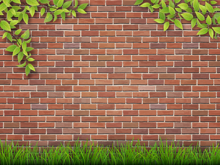 tree grass: Grass and tree branches on red brick wall background.