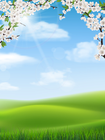 tree grass: Blossom tree branches with flowers on rural landscape background. Green grass in the foreground. Illustration