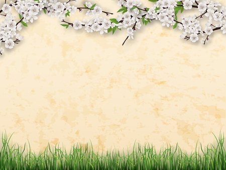 green flowers: Tree branches with blooming flowers and green leaves on stucco  wall background. Grass on the foreground.