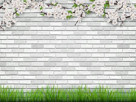 咲く花と白いレンガ壁の背景に緑の葉を持つ木の枝。前景草。春のベクトルの背景。  イラスト・ベクター素材