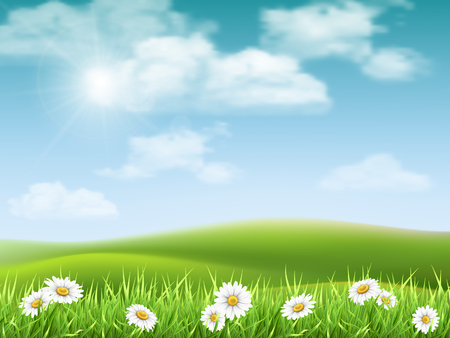 foreground: Rural hilly landscape with daisies in the foreground. Vector nature background.