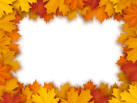 Vector frame of fallen maple leaves, isolated on white background. Decorative border for seasonal autumn card. Illustration