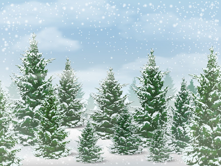 Winter landscape. The background of the forest with the trees against the sky with snow.