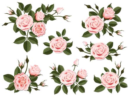 Rosa Rose Boutonniere. Stellen Sie für Blumenmuster einer Gruß-, Hochzeits- oder Einladungskarte ein. Blumenstrauß der dekorativen Gartenblume. Knospe, Blütenblätter und Blätter der Pflanze. Vektorgrafik