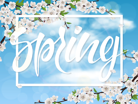 Spring lettering and cherry tree branch with blossom flowers and leaves on blue sky background. Vector illustration. Illustration