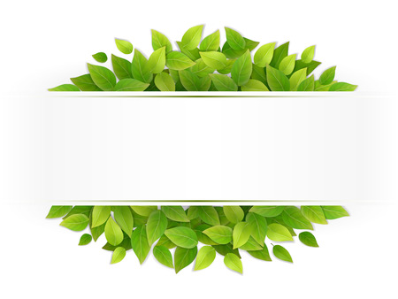 Eco banner with fresh green leaves. Blank with place for text. Realistic vector illustration. Illustration