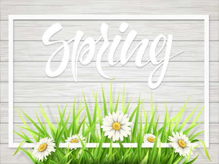 Spring lettering with grass and chamomile in frame on wooden background.