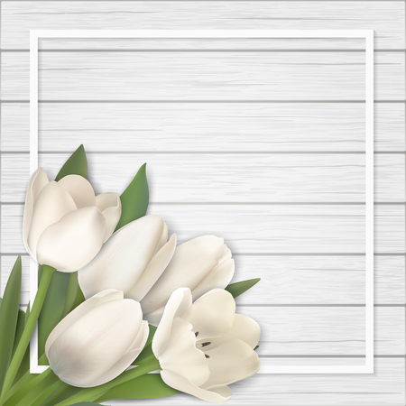 White tulip bouquet on white wooden background. Realistic vector