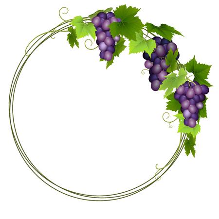 Blue grapes wreath