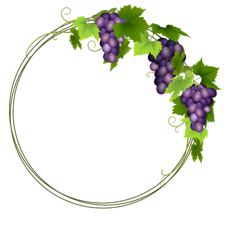 Blue grapes wreath