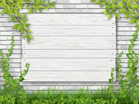 Cartello in legno bianco inchiodato al muro di mattoni ricoperto di edera. Rami di albero e dell'erba verde nella priorità alta.