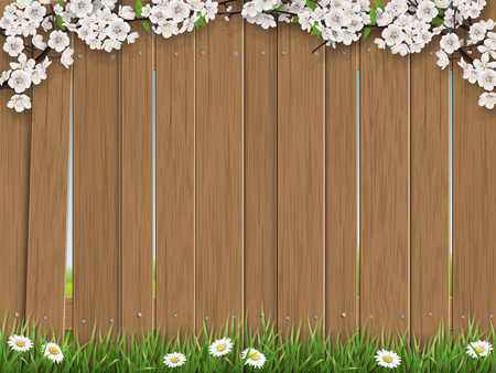 Flowering branches of trees and grass on the old wooden fence background. Rural vector background for spring cards with place for text. Illustration