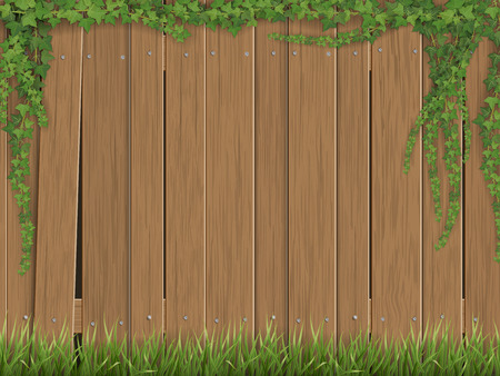 Ivy and grass on old wooden fence background. Fence made of vertical slats.