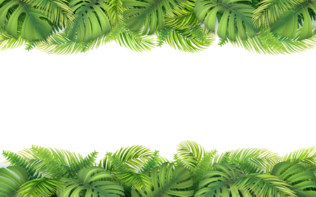 Horizontal tropical border with leaves of monstera, fern and palm tree. Design element for card, advertisement of vacation or invitation. Vectores