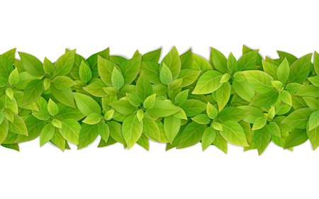 Vector horizontal seamless border with green leaves. Element for the design of a frame, background or garland.
