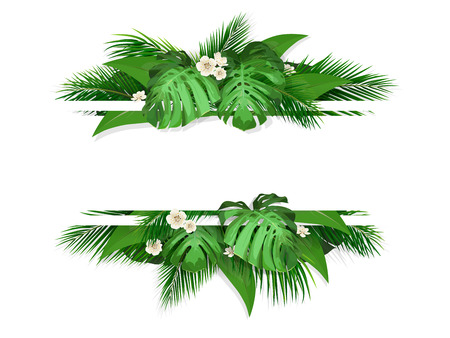 Exotic tropical leaves. Banner with space for text. Frame with exotic plants monstera, banana palm tree and flowers. Illustration