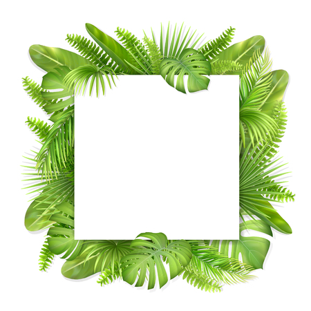 Square card with tropical leaves on background. Foliage of exotic plants. Vector realistic illustration for decorating a greeting card, invitation or flyer.