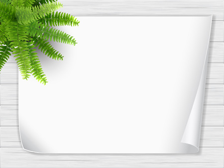 A houseplant in a pot stands on a wooden table and a sheet of white paper. Fern bush. Top view.  イラスト・ベクター素材
