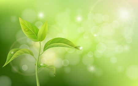 Growing sprout on green background with effect bokeh and glare. Illustration