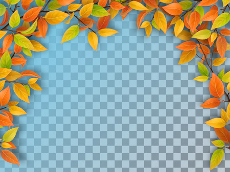 Realistic vector tree branches with autumn autumn in arch form. Yellow and red foliage. Element of natural design. Isolated on a transparent background.
