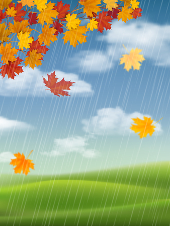 Autumn landscape with a branch of maple and falling leaves. Rainy weather. Vector realistic background.