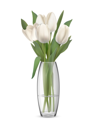 A bouquet of white tulips in a glass vase with water. Element of interior decor. Realistic vector illustration. Isolated on white background with transparent effect.
