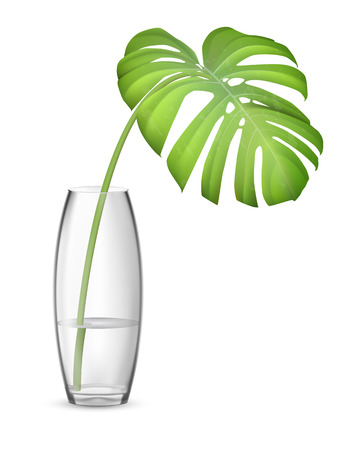 Leaf of monstera in glass vase with water. Element of interior decor. Realistic vector illustration.