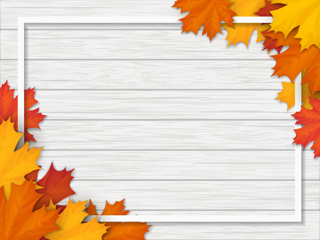 Frame decorated of fallen maple leaves. Autumn foliage on the white background of a wooden vintage table surface. Realistic vector illustration. Stock Photo