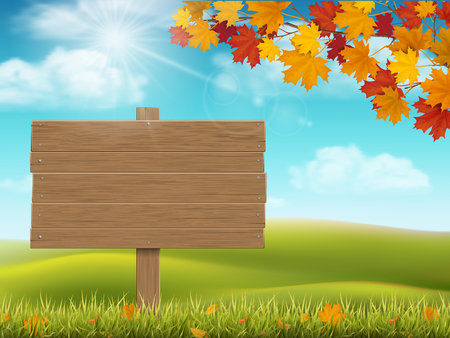 Wooden sign on rural landscape background. Autumn grass and fallen leaves. Seasonal nature background with hill, meadow and sky. Illustration